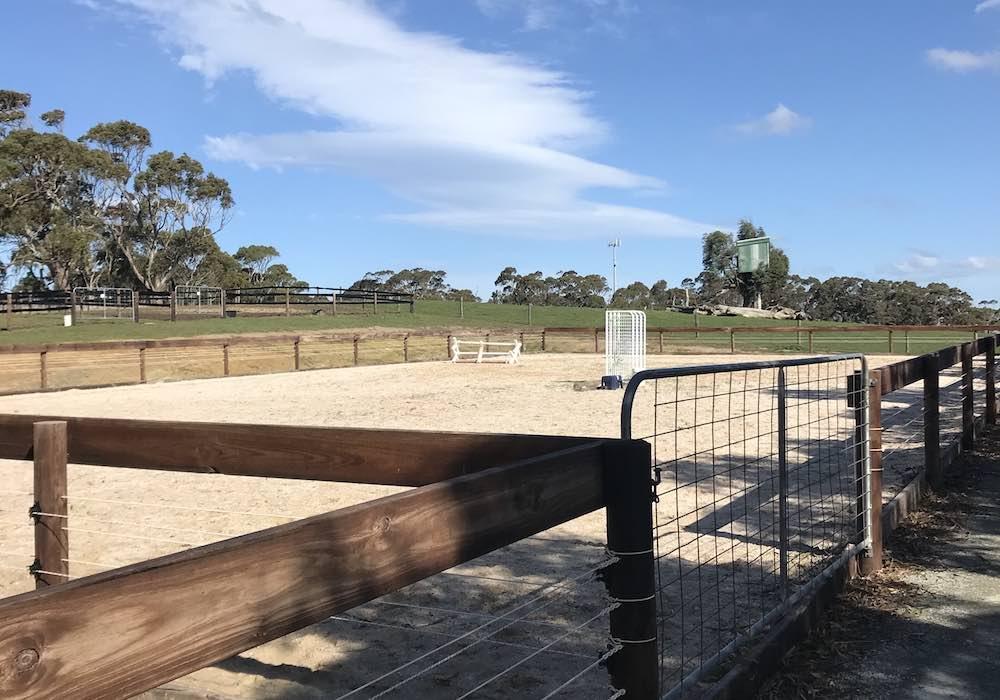 Morphettville Equine Clinic (Hills Clinic), South Australia