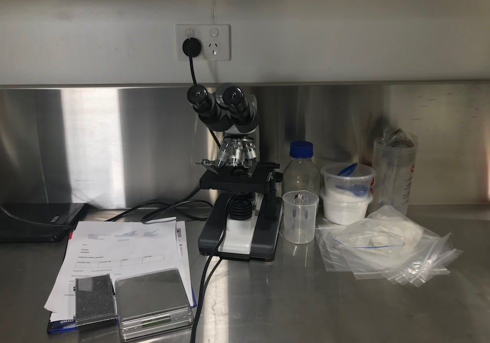 Laboratory, Morphettville Equine Clinic (Hills Clinic), South Australia
